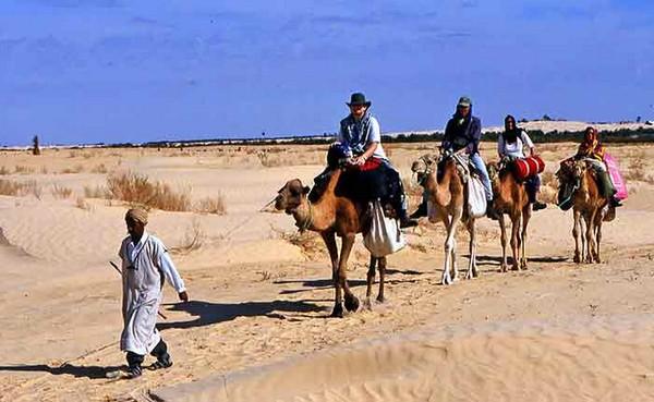Les randonnées à dos de chameau en Tunisie